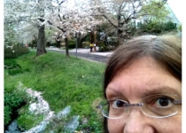Carol Barton and cherry blossoms